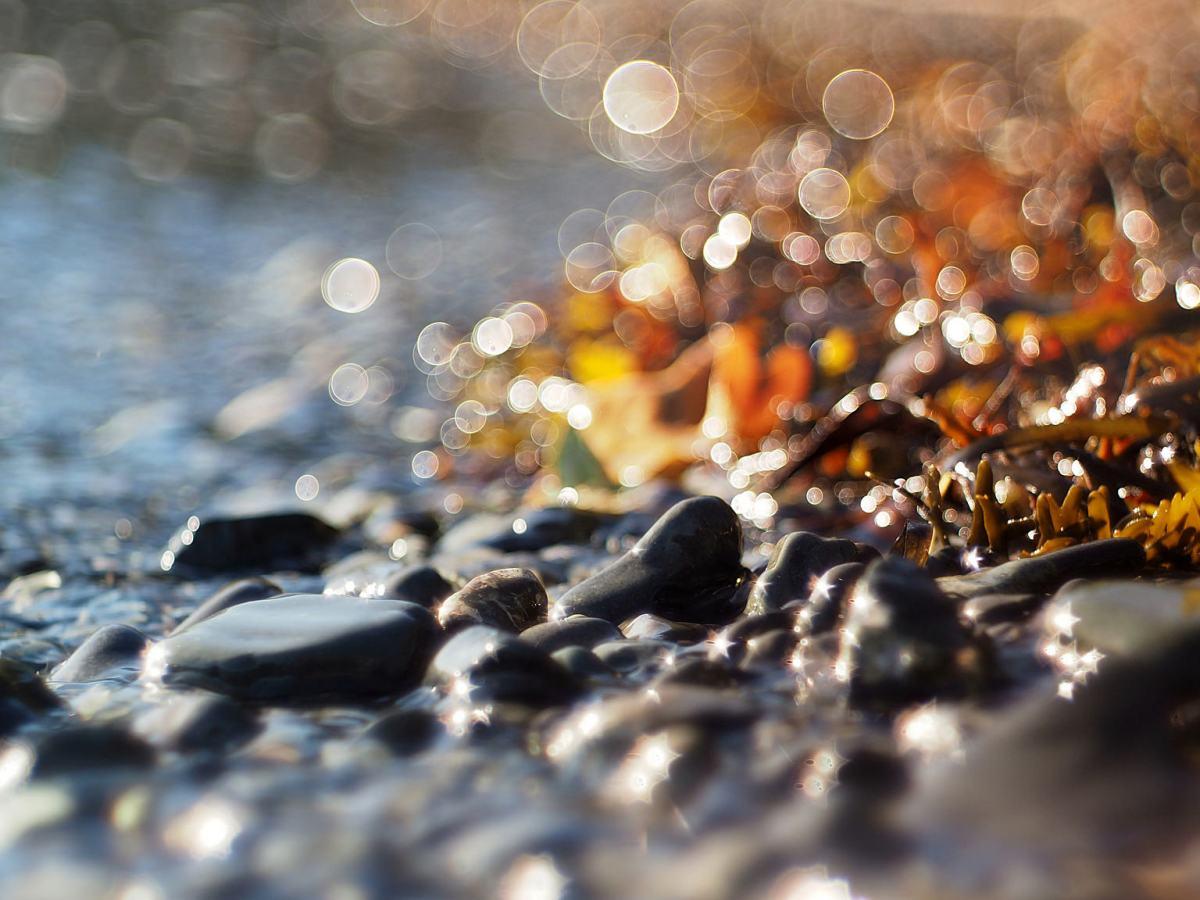 Stones at the Sea Edge